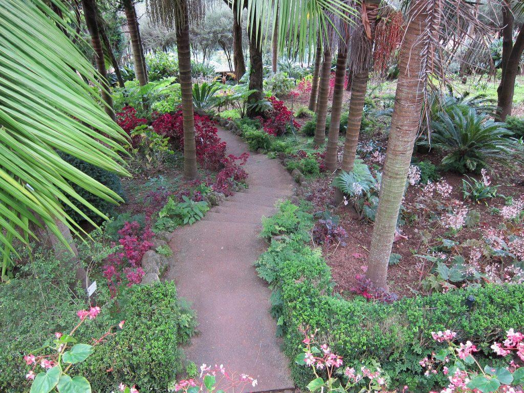 Nos conseils pour aménager un jardin en pente